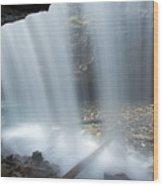 151207p151 Wood Print