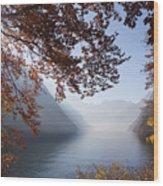151207p156 Wood Print