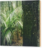 Jungle 72 Wood Print