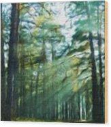 Nature Landscape Nature Wood Print
