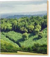 Art Landscapes Wood Print