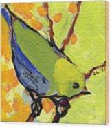 16 Birds No 2 Wood Print