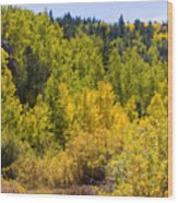 Crystal Creek Autumn Wood Print