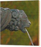 16- Fountain Wood Print