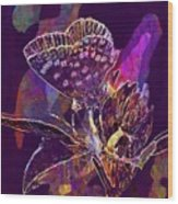 Insect Nature Live  Wood Print