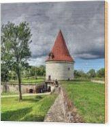 Cesu Latvia Wood Print