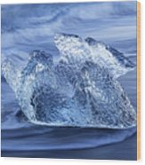 Ice On Beach Wood Print