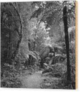 Jungle 45 Wood Print