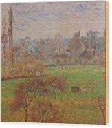 163 Wood Print