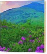 Nature Landscape Illumination Wood Print