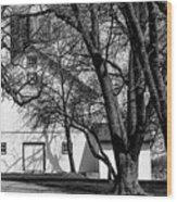 169 Marshfield Wisconsin Farm B W Wood Print