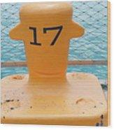 17 At Navy Pier Wood Print