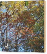 Autumn In Ma Wood Print
