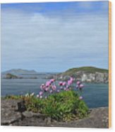 Blasket Islands Wood Print