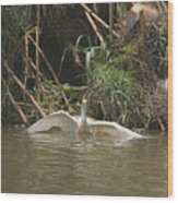 Cattle Egret Cooling Off In The Lake Wood Print