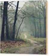 Landscape Oil Painting On Canvas Wood Print
