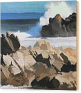 17 Mile Drive Pacific Ocean  Wood Print