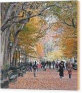 Poets Walk Wood Print