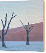 Sossusvlei - Namibia Wood Print