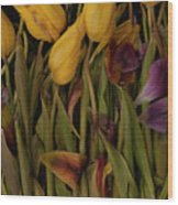 Tulips Wilting Wood Print