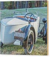 1743.005 1930 Mg Back Wood Print