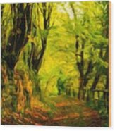Landscape Nature Drawing Wood Print