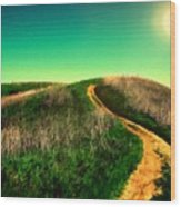 P G Landscape Wood Print