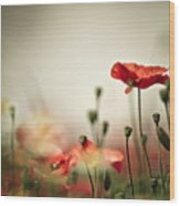 Poppy Meadow Wood Print
