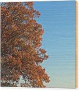 170 Wood Print