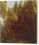 1856-57 Pan Amongst The Reeds Arnold Bcklin Wood Print