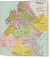 1869 King County Map Wood Print