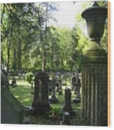 18th Century Cemetery In Virginia Wood Print by Don Struke