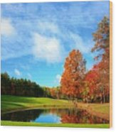 18th Hole Par3 Wood Print