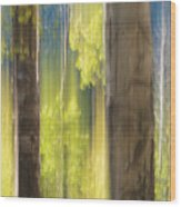 18x34 Wood Print