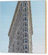 Flatiron Building Wood Print