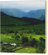 P W Landscape Wood Print