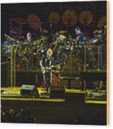 The Grateful Dead At Soldier Field Fare Thee Well Wood Print