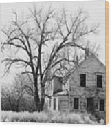 1930's Abandoned Farm House Near Aberdeen South Dakota 1965  Wood Print