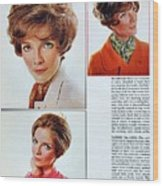 1960 70 Stylish Female Hair Styles Brown Mature Lady Wood Print