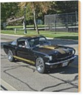1966 Shelby Gt350h Stojan Wood Print