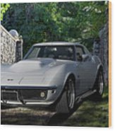 1969 Corvette Lt1 Coupe I Wood Print
