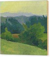 1982 8a Wood Print