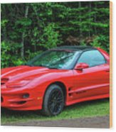 1998 Pontiac Firebird Trans Am Wood Print