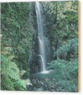 1b6351 Diamond A Waterfall Wood Print