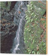 1b6353 Falls On Sonoma Mountain Wood Print