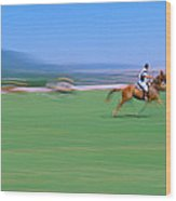 1998 World Polo Championship, Santa Wood Print