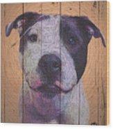 8337805 Wood Print