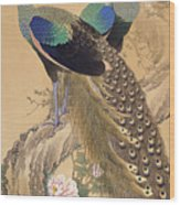 A Pair Of Peacocks In Spring Wood Print