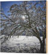 A Winter's Tale Wood Print