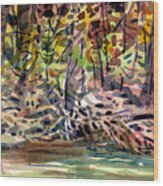 Across The Creek Wood Print